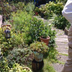 Y様邸ガーデンリフォーム 我が家のミニパーク(雑草のない庭)